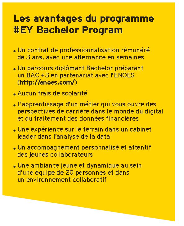 , Analyst Business Data, le Bachelor d'EY en partenariat avec l'ENOES