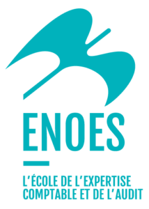 Groupe ENOES, Le groupe ENOES